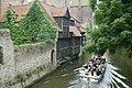 Muurbegroeiing te Brugge - 369307 - onroerenderfgoed.jpg