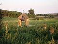 Myców - drewniana cerkiew greckokatolicka - otoczenie (03) - DSC03676 v1.jpg