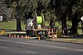 NBN Co fibre optic cable being laid in Tarcutta St in Wagga (4).jpg