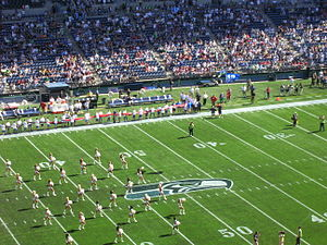 English: Seattle Seahawks Seagals dance during...