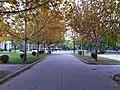 Nankai University - panoramio (8).jpg