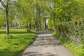 Natur am Krötenhof Hof 20210523 DSC09683.jpg