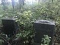 Naylor Cemetery near Riggs, Missouri.jpg