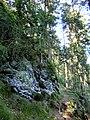 Neuwelter Jägersteig 1 - panoramio.jpg