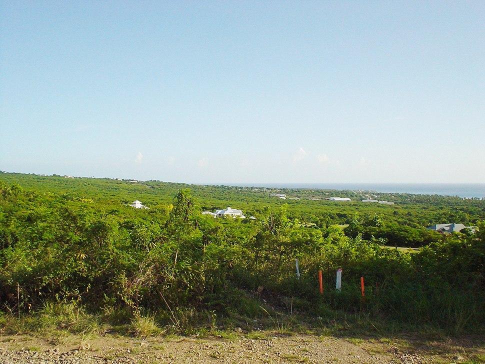 Nevis-lookingtosea