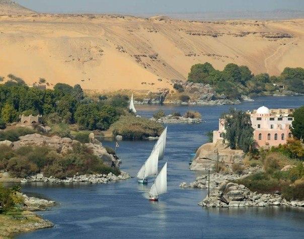 Nile Feluccas in Aswan