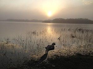Nine Mile Pond, NPSPhoto, S.Cotrell (8720015175).jpg