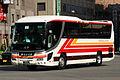 Nishitetsu Kanko Bus - 8102.JPG