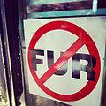 No Fur (8286710174).jpg