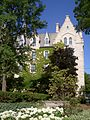Northwestern University, ivy.JPG