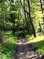 Notton Woods footpath to Royston - geograph.org.uk - 430916.jpg