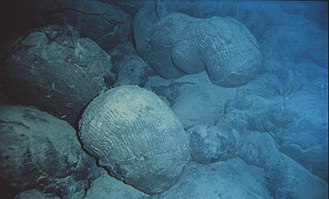 Underwater - Note the bluish cast given to objects in this underwater photo of pillow lava (NOAA).