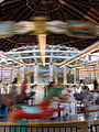 Oaks Park carousel motion - Portland Oregon.jpg