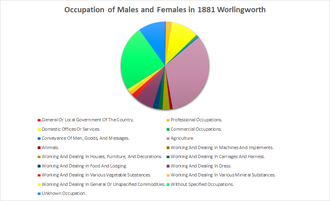 Worlingworth - Occupation of Males and Females in Worlingworth, as reported by the 1881 Census
