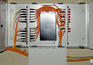 An optical fiber distribution frame.