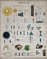 Optics; page to a partwork on science, with pictures of opti Wellcome V0025334ER.jpg