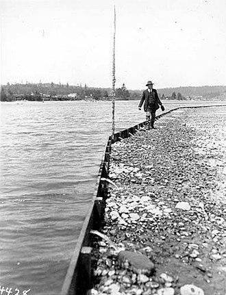 Poulsbo, Washington - Oyster farming in Poulsbo, 1920