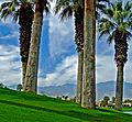 Palm Desert and San Jacinto Mountains, CA 2-14 (29501988362).jpg