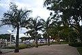 Palmenallee Rua Frei Caneca (22103484752).jpg