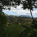 Pantanal, Miguel Pereira - RJ, Brazil - panoramio (55).jpg