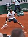 Paris-FR-75-Roland Garros-2 juin 2014-Lajovic-10.jpg