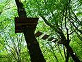 Park linowy, Racibórz 3.JPG