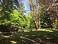 Park und Villa Haas Trauerulme mit Grotte, Robenie und Hänge-Buche.jpg
