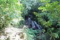 Parque Estadual Graciosa 2.JPG