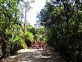 Parque Nacional - acesso a piscina nova.jpg