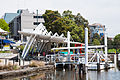 Parramatta ferry terminal, Sydney, 26th. Nov. 2010 - Flickr - PhillipC.jpg