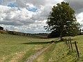 Pastures, East Garston Woodlands - geograph.org.uk - 230112.jpg