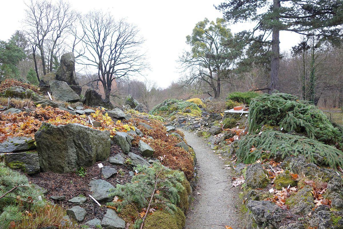 File:Pathway - Botanischer Garten, Dresden, Germany Handy