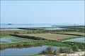 Paysage au sud de Hué (4393645671).jpg
