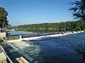 Penrith Weir - Nepean River - Penrith NSW (5554094989).jpg