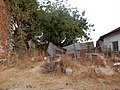 Perto da Avenida Amílcar Cabral, Bolama, Guiné-Bissau – 2018-03-03 – DSCN1083.jpg