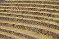 Peru - Sacred Valley & Incan Ruins 190 - Pisac (8114548819).jpg