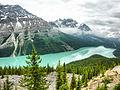 Peyto Lake (7631770462).jpg