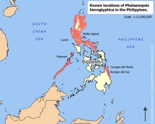 Phalaenopsis hieroglyphica locator map.png