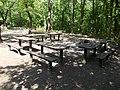 Picnic place, Farkas Forest, 2017 Káposztásmegyer.jpg
