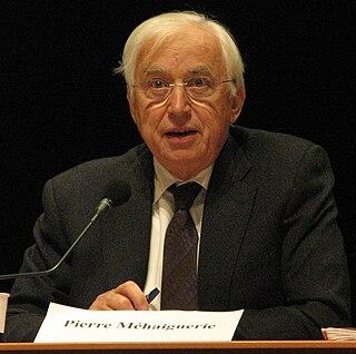 Pierre Méhaignerie French politician