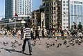 Pigeons at the Taxim square - panoramio.jpg