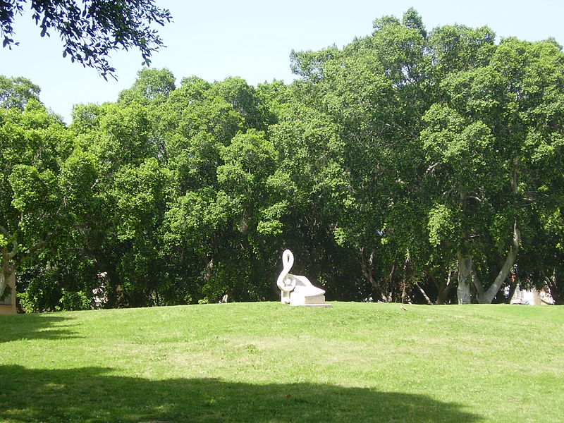 גבעת עפרה בגן התקווה