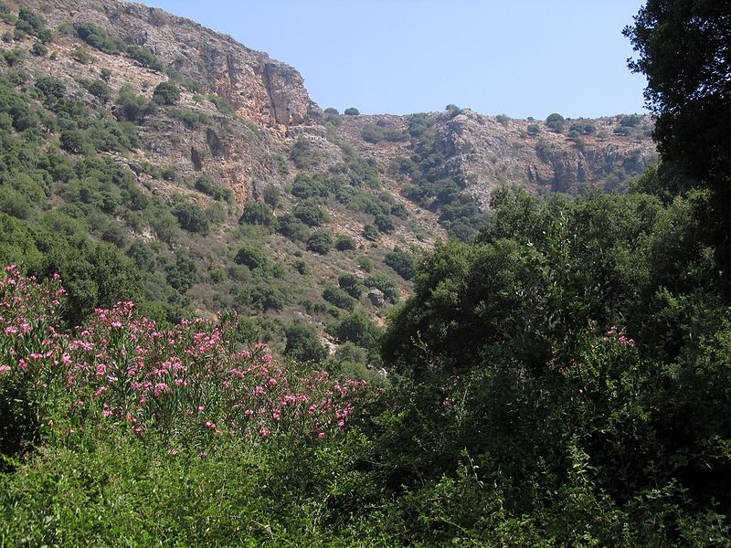 Betzet Israel  city photos : פיקיוויקי – מאגר תמונות שיתופי לשימוש ...