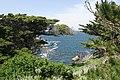 Point Lobos. 2010 04 17 - panoramio - Vadim Manuylov (6).jpg