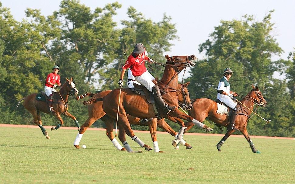 Polo At the Kentucky HOrse Park (5995905109)