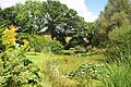 Pond at Burrow Farm Gardens - geograph.org.uk - 917687.jpg