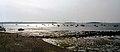 Poole Harbour, Dorset (150214) (9453295621).jpg