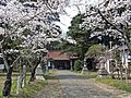 Precincts of Watari-jinja shrine in Spring season 2.JPG