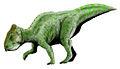 Prenoceratops BW.jpg