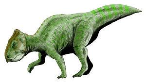 Prenoceratops - Restoration